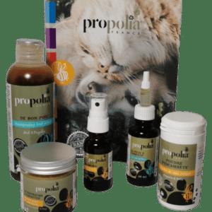 Coffret-soin-animaux-bio-Propolia